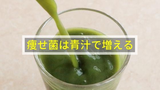 痩せ菌は青汁で増える