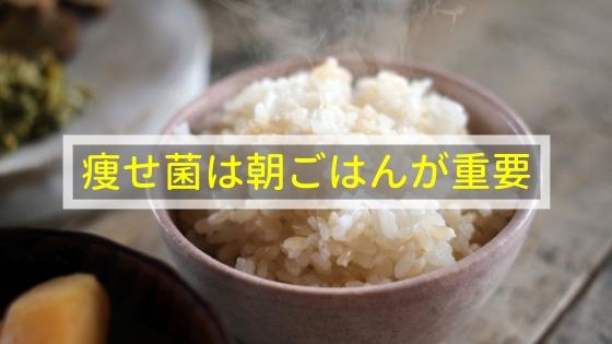 痩せ菌は朝ごはんが重要!?