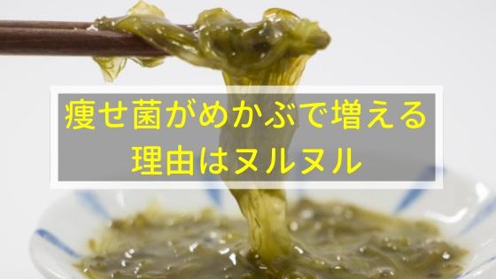 痩せ菌がめかぶで増える理由はヌルヌルにあったんです!