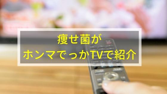 痩せ菌がホンマでっかTVで取り上げられたときの番組内容