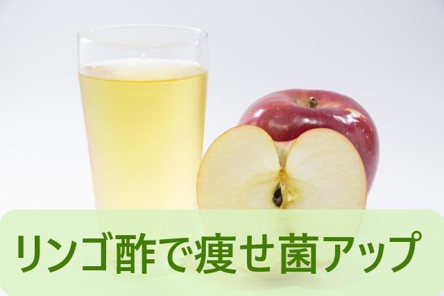 リンゴ酢で痩せ菌が増える