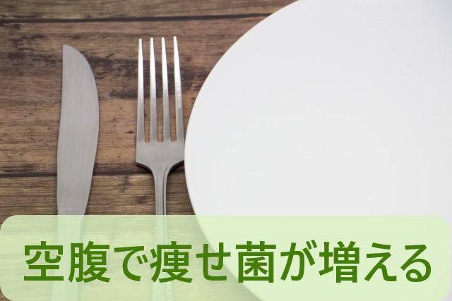 空腹で痩せ菌が増える