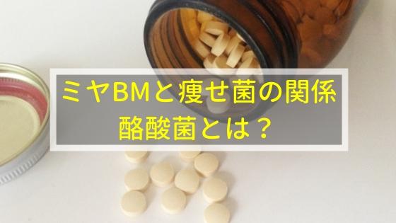 ミヤBMと痩せ菌の関係!酪酸菌とは?
