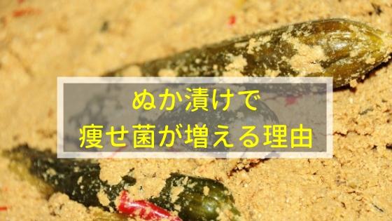 ぬか漬けで痩せ菌が増える理由