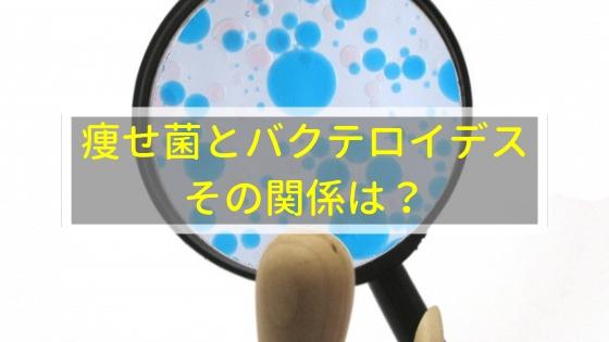 痩せ菌とバクテロイデス、その関係は?