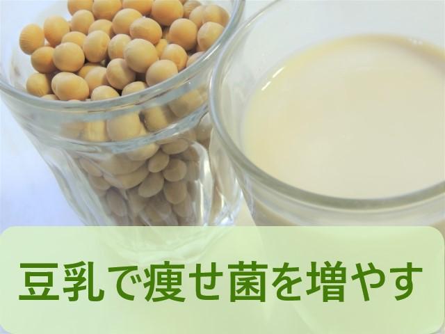 豆乳で痩せ菌を増やす