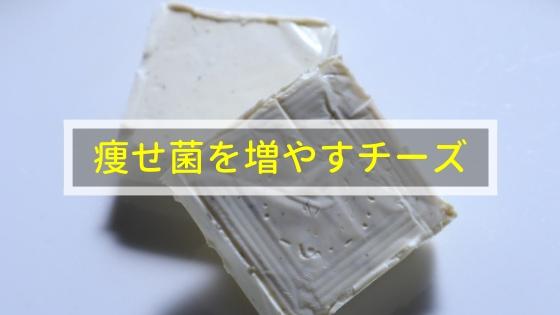 痩せ菌を増やすチーズ