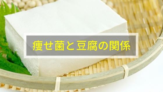 痩せ菌と豆腐の関係