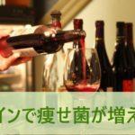 ワインで痩せ菌が増える