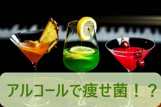 痩せ菌がアルコールで増やせる