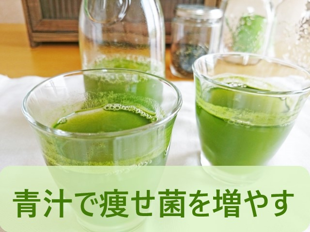 痩せ菌を青汁で増やす