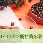 痩せ菌をチョコ・ココアで増やす
