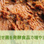 痩せ菌を発酵食品で増やす