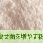 痩せ菌を増やす粉
