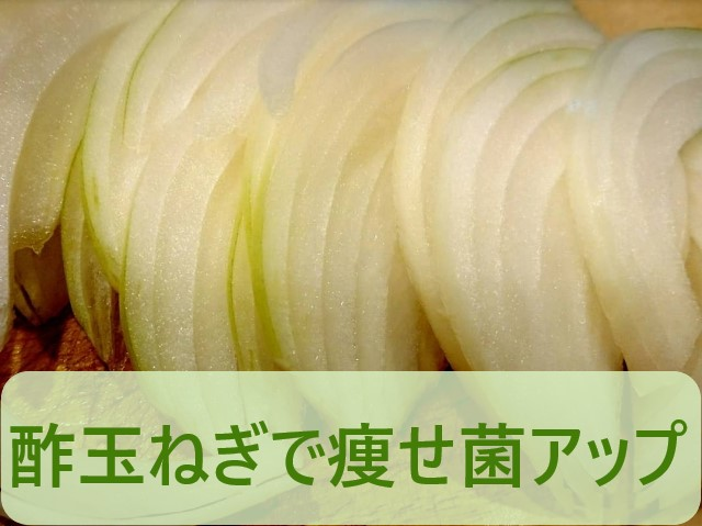 酢玉ねぎで痩せ菌が増える