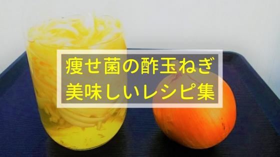 痩せ菌の酢玉ねぎ、美味しいレシピ集