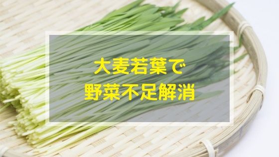 痩せ菌青汁の大麦若葉で野菜不足解消