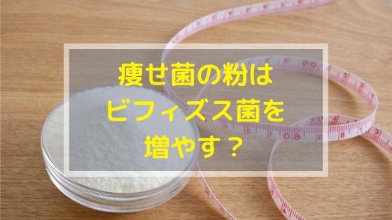 痩せ菌の粉はビフィズス菌も増やすのか