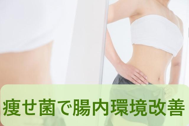 痩せ菌で腸内環境改善