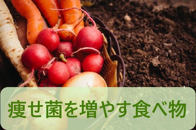 痩せ菌を増やす食べ物