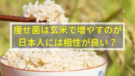 痩せ菌は玄米で増やすのが日本人には相性が良いてホント?