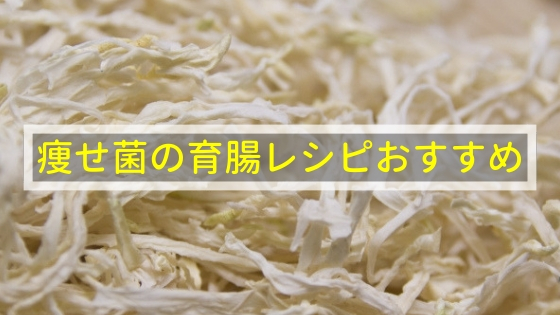 痩せ菌の育腸レシピおすすめ3選