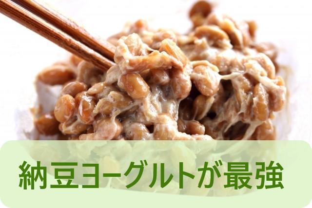 痩せ菌は納豆ヨーグルトが最強