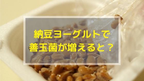 痩せ菌納豆ヨーグルトで善玉菌が増えるとどうなるのか