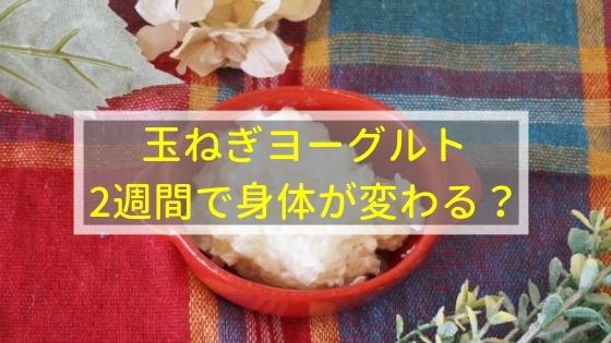 痩せ菌を増やす玉ねぎヨーグルトは2週間で身体が変わる!?