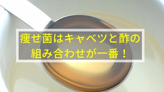 痩せ菌はキャベツと酢の組み合わせが一番!
