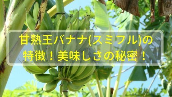 甘熟王バナナ(スミフル)の特徴!美味しさの秘密!