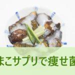 なまこサプリで痩せ菌を増やす