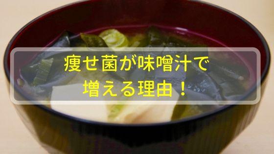 痩せ菌が味噌汁で増える理由!